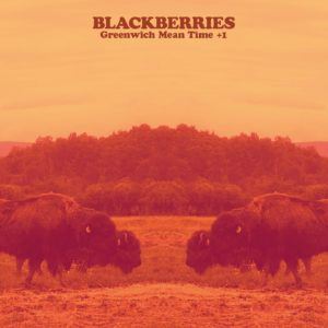 2016-10_adw-blackberries