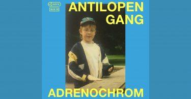 Antilopen Gang Cover Adrenochrom